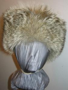 coyote full fur